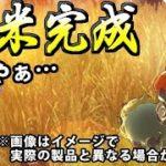 【実況】米で全てを解決するゲーム!? 天穂のサクナヒメでたわむれる #06