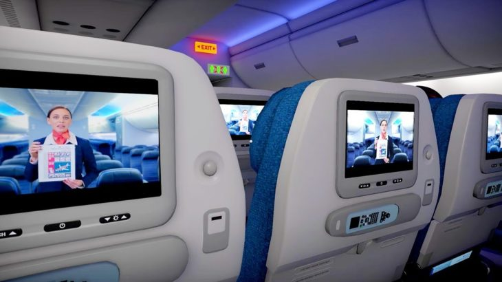 【6時間企画】飛行機のエコノミークラスでフライトに耐えるゲームが面白すぎた!!