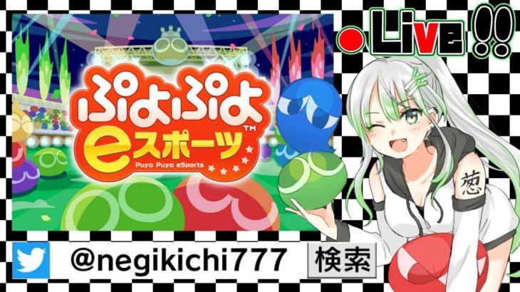 【 ぷよスポ PS4/Switch 】雑談ぷよ!連戦気軽に誘ってくださいね♪【 ぷよぷよeスポーツ 】