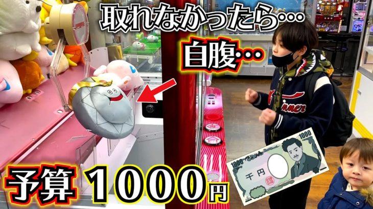 年末 クレーンゲーム 予算1000円!取れなかったらお年玉で自腹…アーム強いらしい…