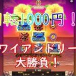 【オンラインカジノ】1回転1000円!ハワイアンドリームで勝負しました【Hawaiian Dream】