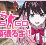 【CSGO/VTuber】やっぱ私にはこのゲームしかないんやなって【LVG/花芽なずな】