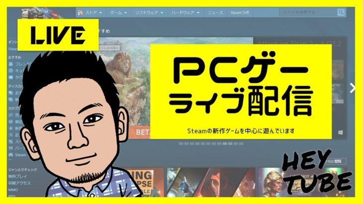 【Steam】新作ゲーム中心に遊びます