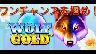 【オンラインカジノ】Wolf Gold