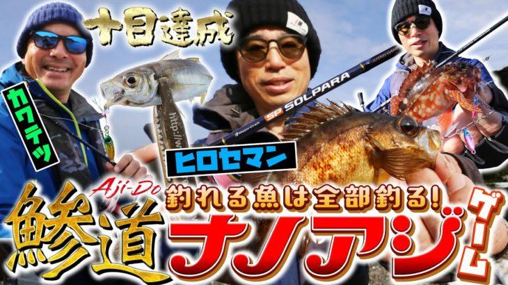 釣れる魚は全部釣る!「ヒロセマンの鰺道ナノアジゲーム」オカッパリで十目達成!!「メジャークラフト」