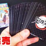 正月かるた?鬼滅の刃 全集中 札取りカードゲーム‼新発売 全種類見てみた!
