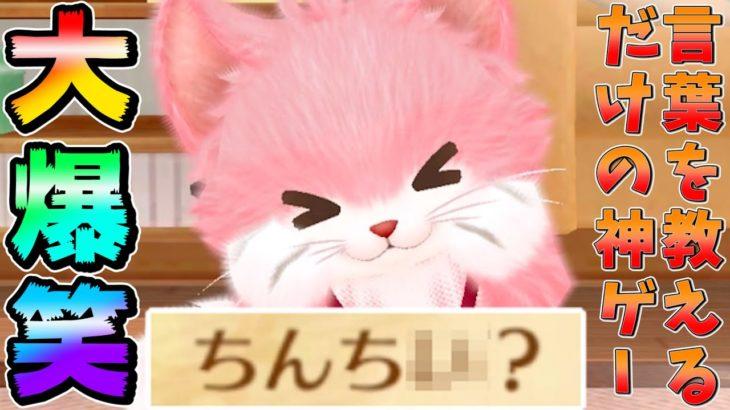 ネコに放送禁止ギリギリの言葉を覚えさせるゲームが面白すぎたWW【ネコトモ】