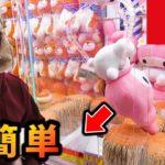 巨大ぬいぐるみが簡単に取れるクレーンゲーム‼タイトーステーション1万円企画 #2