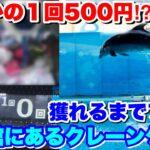 水族館にある1プレイ500円のクレーンゲーム獲れるまでやってみた結果ww【UFOキャッチャー】