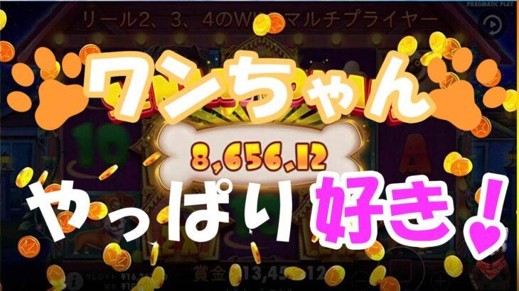 #162【オンラインカジノ|スロット】THE DOG HOUSE(ワンちゃん)は裏切らない?!