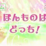 ヒーリングっど♥プリキュアゲーム#39