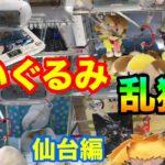 【クレーンゲーム】#444 ぬいぐるみ乱獲!! 仙台でCリングを攻略!? 大量ゲット!! UFOキャッチャー