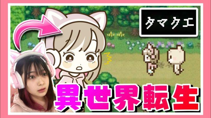 ゲームの世界に入ってしまいました!!!!【タマクエ】【女性ゲーム実況者】【TAMAchan】