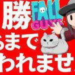 【耐久】優勝するまで終われません クリムゾン ゲーム配信 【 fall guys 】