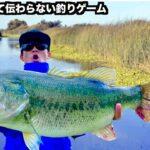 【リアルバス釣り】アメリカのカリフォルニアでリアルバス釣りゲーム生放送ライブ!