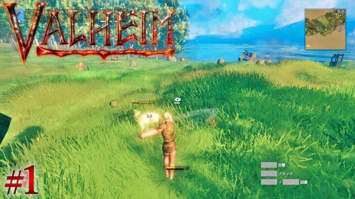 #1 Valheim 実況 オープンワールドサバイバルクラフトゲームを遊んでみます。