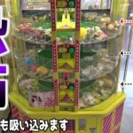 全部取るのに100万円以上かかるレトロゲームが怖すぎるww【ギフトショップ】