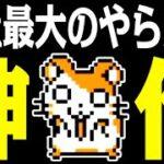 ゲーム実況者失格!!『神ゲー とっとこハム太郎2』
