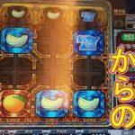 【メダルゲーム実況】目指せ一撃配当!ゆるハラスロット紀行 #8