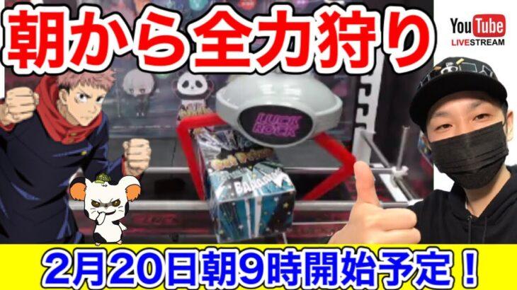 【クレーンゲーム勉強会】初見さん大歓迎!朝から楽しくラックロックLIVE!!