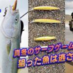 【ルアー合衆国】真冬の渥美サーフゲーム!狙った魚は逃さない!