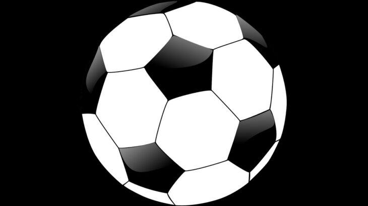 あの大人気サッカーゲームやってみた