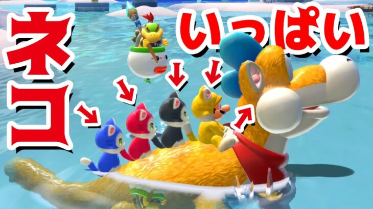 【ゲーム遊び】#10 フューリーワールド マリオにプレッシーもネコいっぱいw ネコシャイン集めに再出発だ!【アナケナ&カルちゃん】Super Mario Fury World
