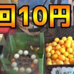 1回10円の奇想天外なクレーンゲームの景品もまた仰天だった・・・