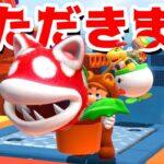 【ゲーム遊び】#12 フューリーワールド 大食いのネコパックンフラワーでいただきますw 【アナケナ&カルちゃん】Super Mario Fury World
