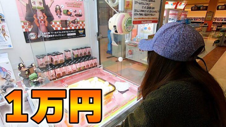 【クレーンゲーム】1万円を使って子ども達のために大量ゲットw