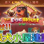 【#2】カジノミーで目指せプロの犬小屋建設師![スロット]