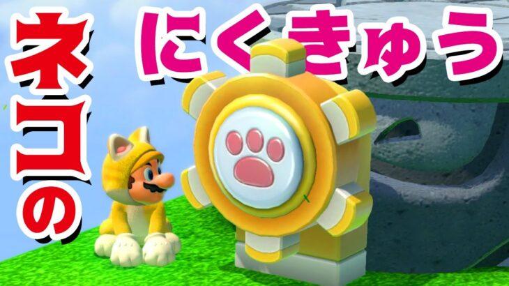 【ゲーム遊び】#3 スーパーマリオ3Dワールド 1-3 ネコの肉球 キノピオ隊長&めがねピオ登場 はじめての3Dワールドを2人でいくぞ!【アナケナ&カルちゃん】Super Mario 3D World