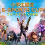【Fortnite/フォートナイト】倶知安(くっちゃん)  eスポーツCUP 小学生限定フォートナイトソロ大会
