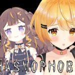 【PHASMOPHOBIA】初見で絶叫ホラーゲームを2人で協力プレイ!【ホロライブ/夜空メル×Anya Melfissa】
