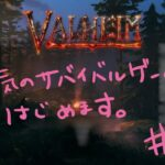 [VALHEIM]気になってたサバイバルゲームやってみます!#1 [ヴァルヘイム]