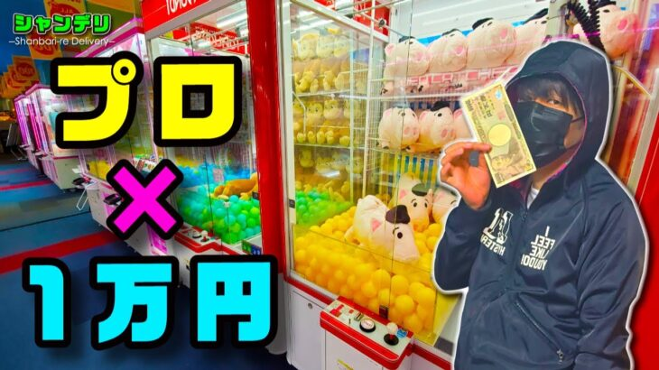 【神ワザ】クレーンゲームのプロは1万円でぬいぐるみ何体ゲットできる?【後編】