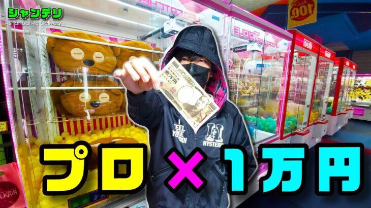 【神回】クレーンゲームのプロは1万円でぬいぐるみ何体ゲットできる?【前編】