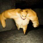 ムキムキの柴犬が「棺桶ダンス」踊ったりして追ってくるホラーゲームがぶっ飛んでる。(コフィンダンスあり)