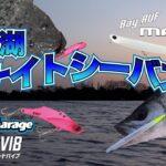 浜名湖 早春のナイトシーバスゲーム/ 橋本康宏