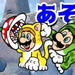 【ゲーム遊び】フューリーワールドでハンコあそびw ネコマリオとネコクッパJrで場所さがしに行こう! 【アナケナ&カルちゃん】Super Mario Fury World