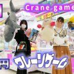 【神回】クレーンゲーム1万円!大量ゲットな姉妹対決【のえのん】