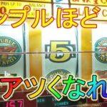 【メダルゲーム実況】目指せ一撃配当!ゆるハラスロット紀行 #17