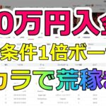 エルドアカジノの出金条件1倍ボーナスをバカラで荒稼ぎ作戦!in30万円入金