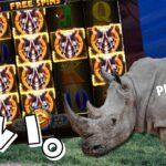 【オンラインカジノ】サイのBUY!!あれ結構勝てる感じのスロットなんじゃないかコレ。『プレイアモ』