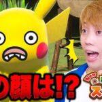 ポケモンの写真をスタンプで加工しよう!『New ポケモンスナップ』ゲーム実況プレイ!ピカチュウの顔が…!!【検証】
