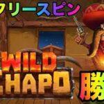 【WildChapo】激甘!勝てすぎるフリースピン【オンラインカジノ】