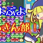 【ぷよぷよeスポーツ】ぷよぷよおっさん部!【Switch】