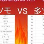 【ぷよぷよeスポーツ】 フィーバー 小ツモvs多ツモ対抗戦