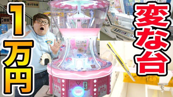 【全種類】1万円で特殊なクレーンゲームを全種類攻略できるまで帰れません!!!
