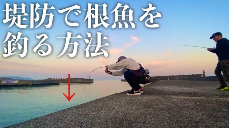 【ライトゲーム】昼間に堤防で根魚をジグヘッドとワームで釣る方法を試していたらまさかの結末に